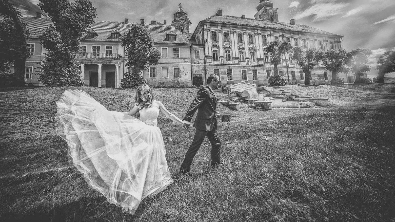 Referencje ślubne