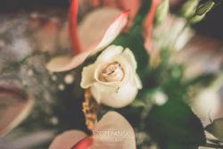 Detale ślubne obrączki ślubne w kwiecie róży