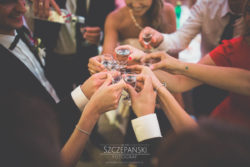 Detale ślubne toast na weselu