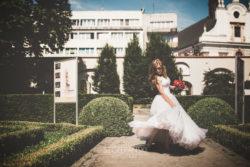 Plener ślubny we Wrocławiu ogród Ossolineum