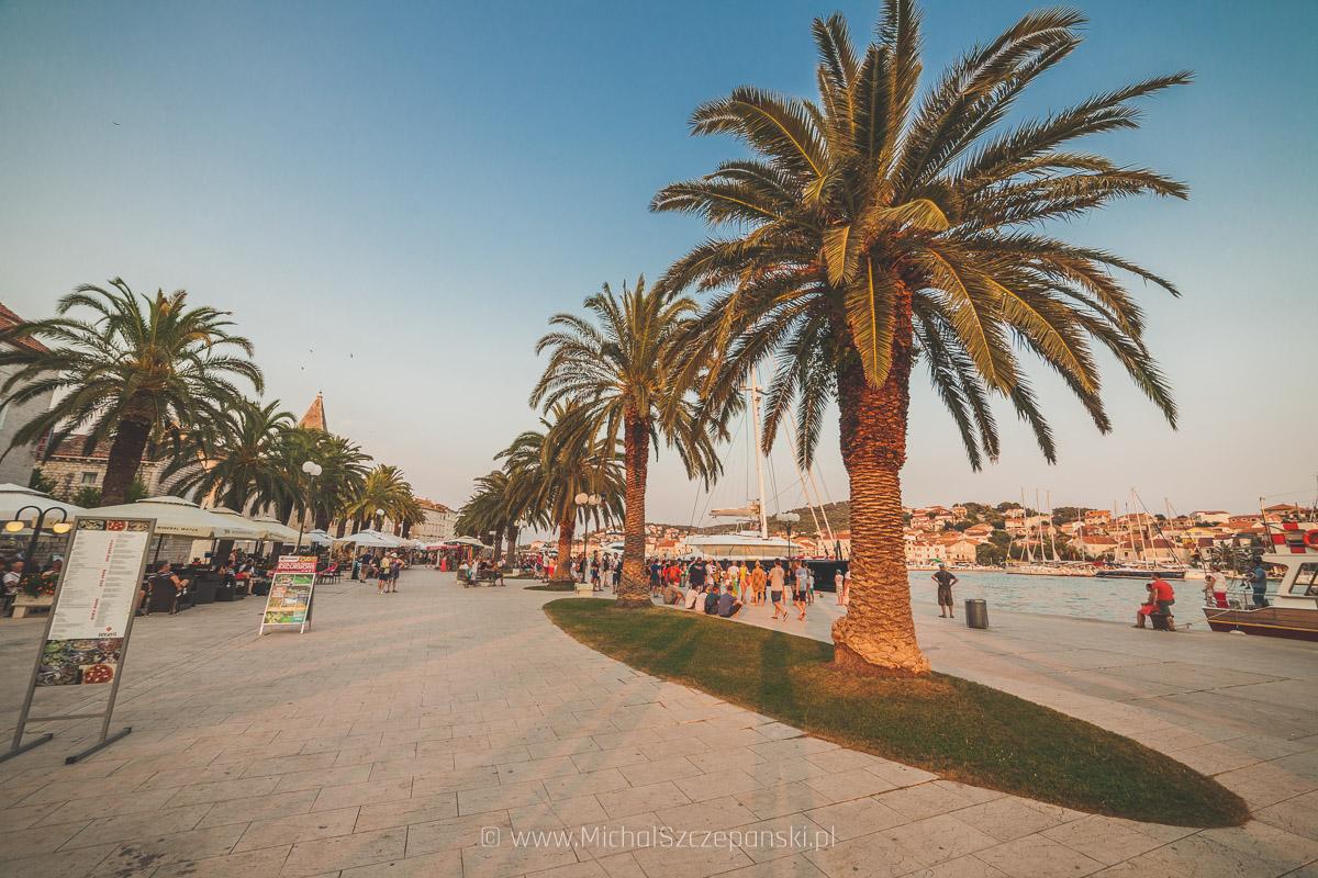 Trogir - promenada z palmami