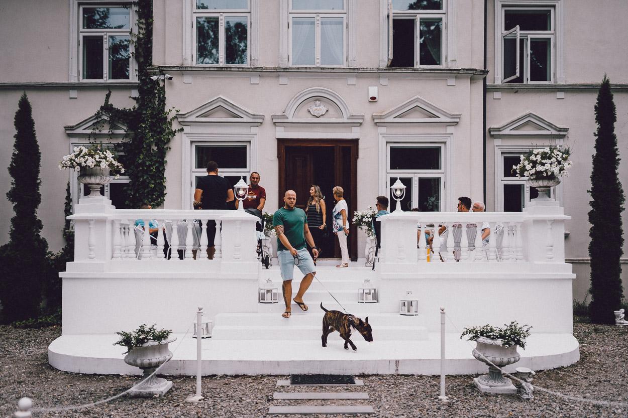 Pan Młody wychodzi z psem przed Pałac Pstrokonie.