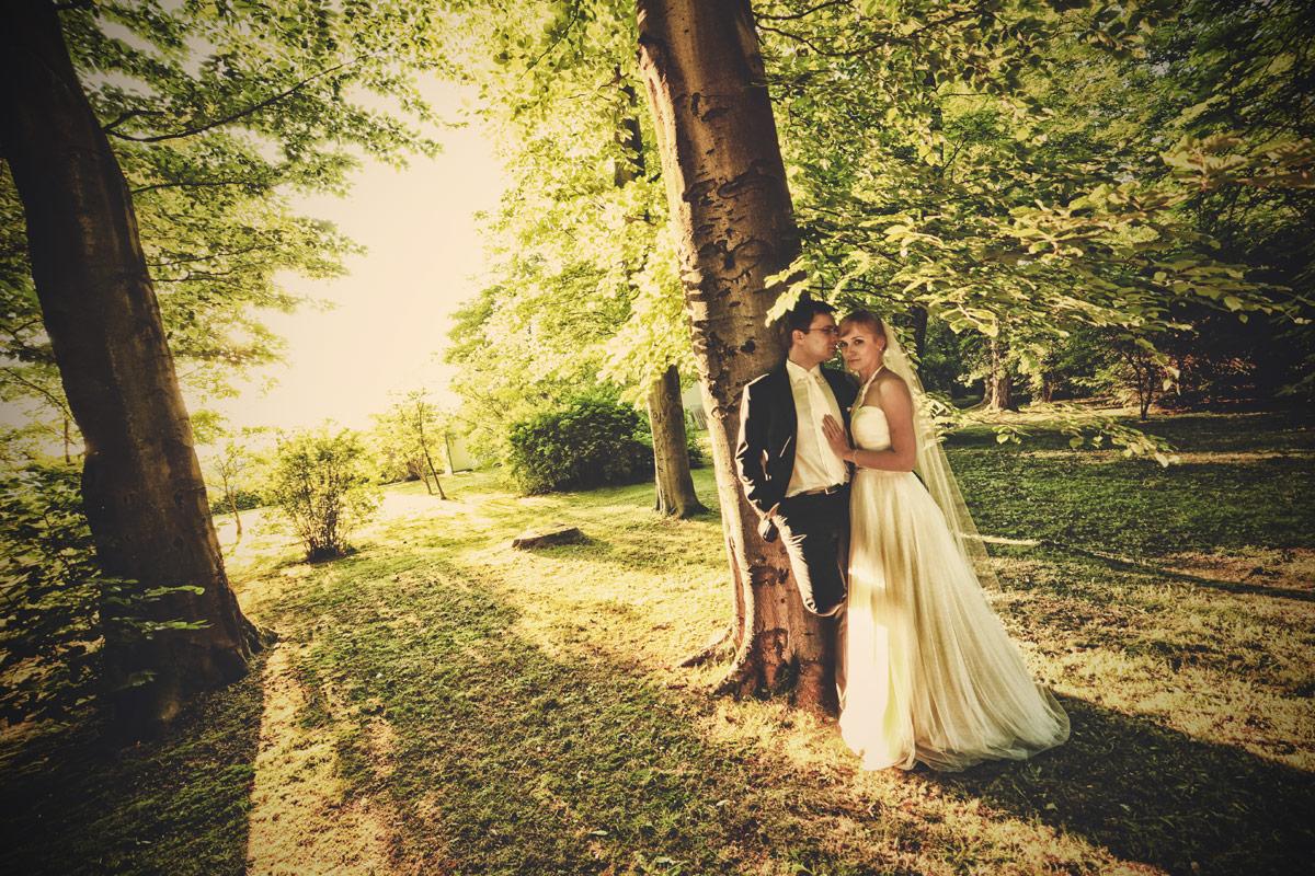 Plener ślubny we Wrocławiu w parku na pergoli